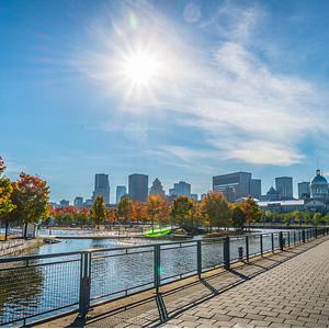 Alter Hafen (Montreal)