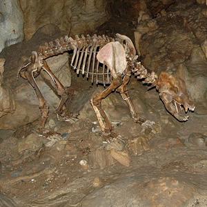 Karls- und Bärenhöhle
