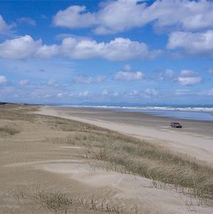 Ninety Mile Beach (Neuseeland)