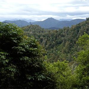 Te-Urewera-Nationalpark