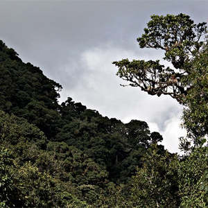La Tigra National Park