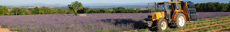 Reiseführer Südost-Frankreich